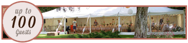 Marquee Hire 100 guests